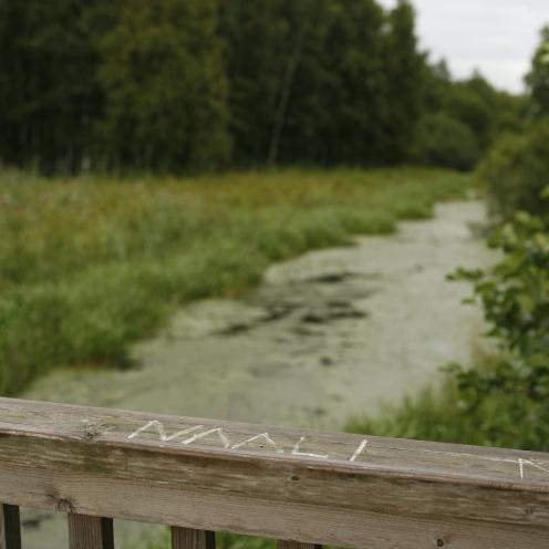 """NIMIPUUTTO Elias Lönnrotin Suomalais-ruotsalaisen sanakirjan mukaan niistä """"kenen ei enää nimiäkään muisteta"""". Nykyään sukupuuttoa seuraava vaihe, jossa sukupuuttoon kuollut laji, kieli, kulttuuri tai muu sellainen katoaa yleisestä tietoisuudesta. MR"""