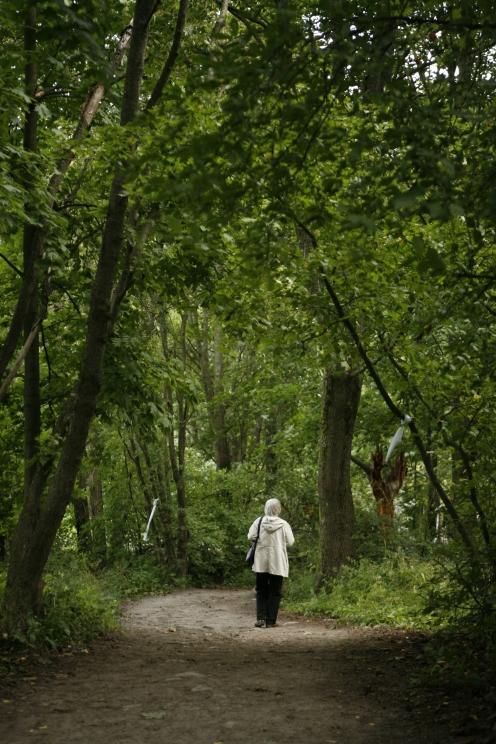 rakkaudesta apa metsassa